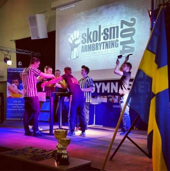 SkolSM 2014